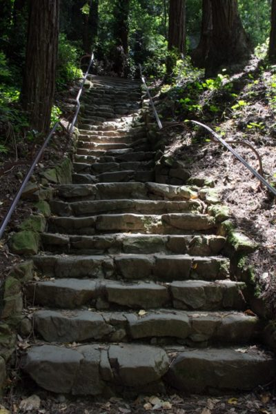 Dipsea Stairs - Big Stone Steps