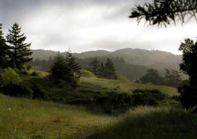 San Geronimo Valley rolling green hills